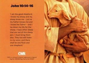 good shepherd photo