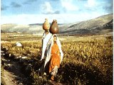The hills of Samaria with women carrying water pot Compliments of BiblePictureGallery.com