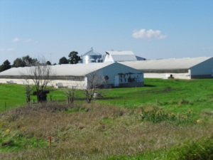 Photo of a Factory Farm in Iowa Taken when on route to my Aunt's, Sept 2014 Probably a pig 'farm'