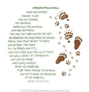 Prayer for Animals, Albert Schweitzer, Calligraphy Art Plaques www.michaelnoyes.com