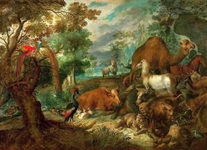 Hondecoeter Paradise Public Domain Wikimedia